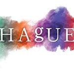 Hague Software Solutions Ltd
