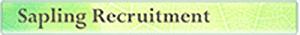 Sapling Recruitment